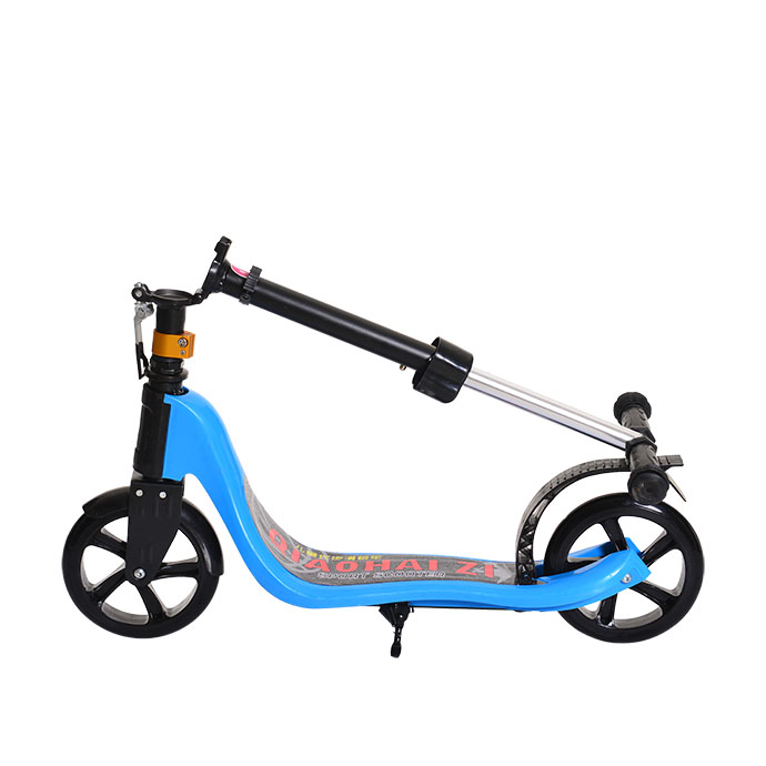 Foldable City Scooter FB-S218F