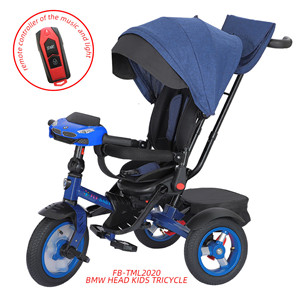 Remote Baby Tricycle With Music and Light