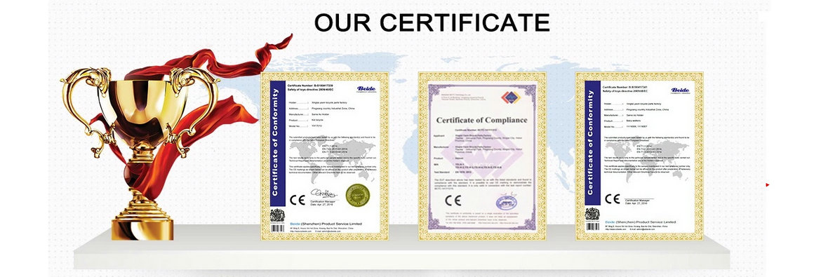 Flybaby Certificate